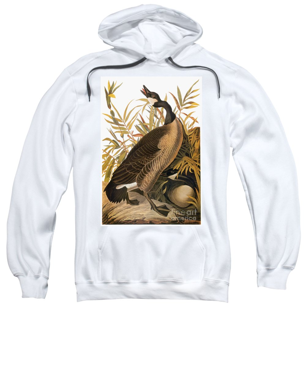 1838 Sweatshirt featuring the photograph Audubon: Goose by Granger