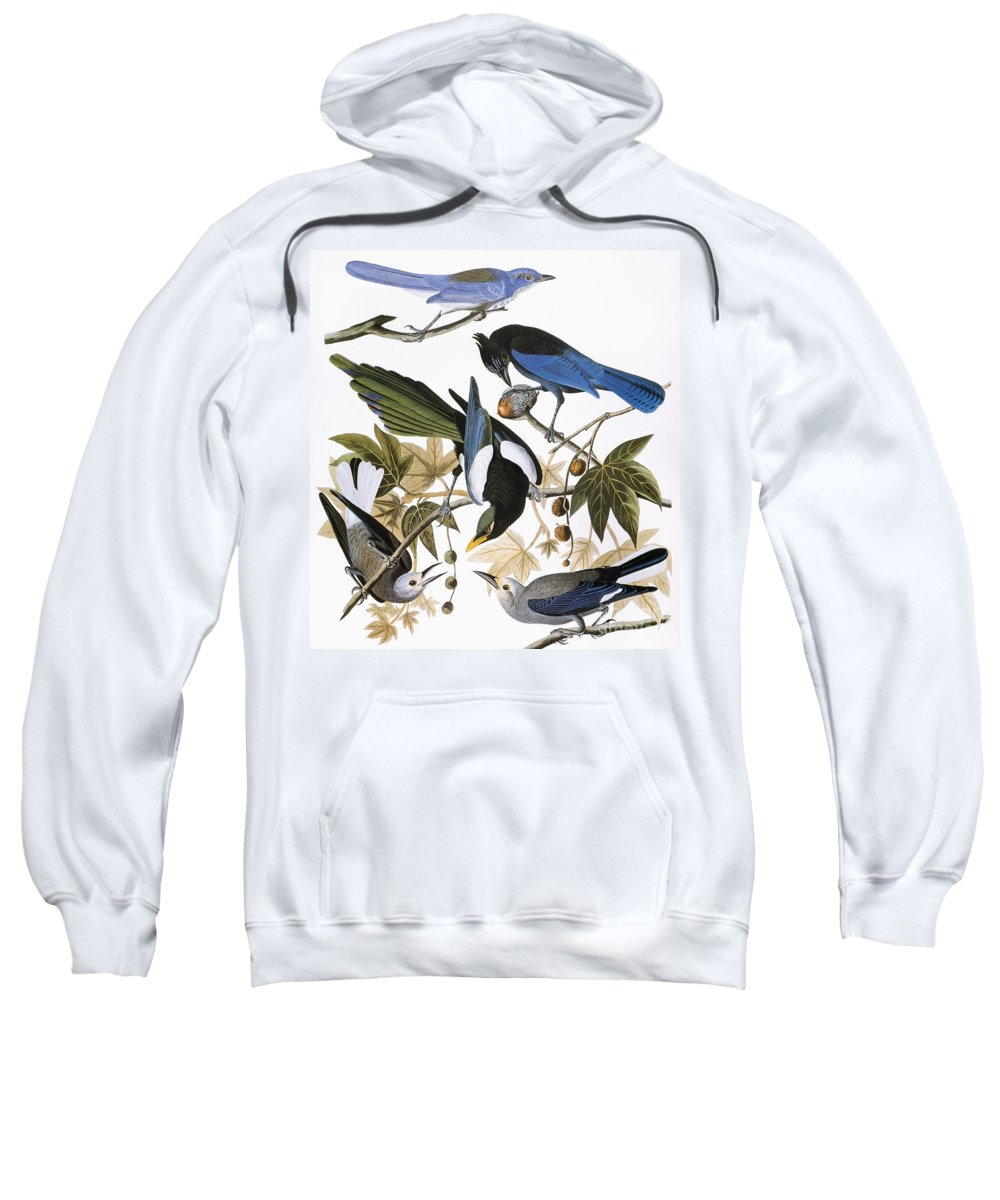 1838 Sweatshirt featuring the photograph Audubon: Jay And Magpie by Granger