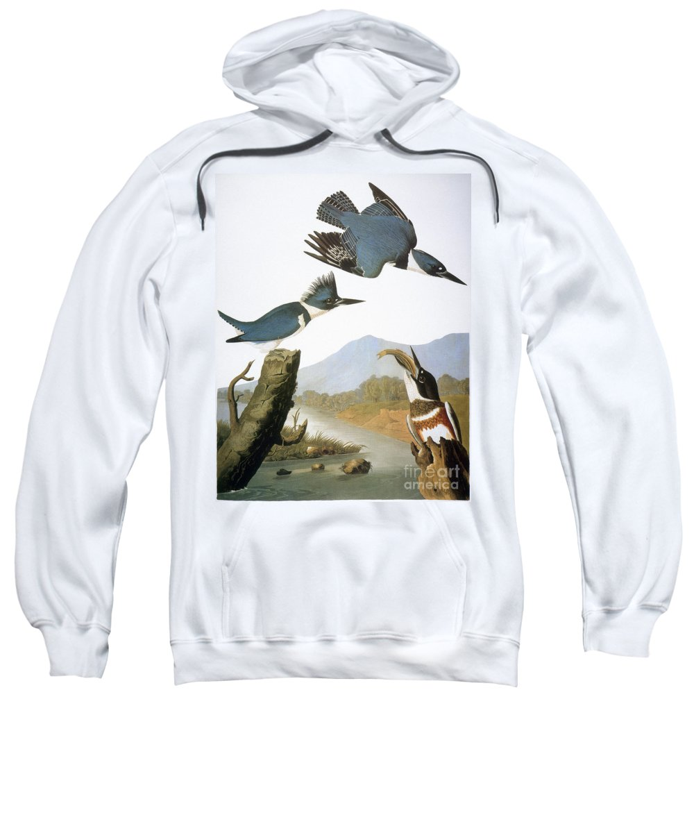 1827 Sweatshirt featuring the photograph Audubon Kingfisher by Granger