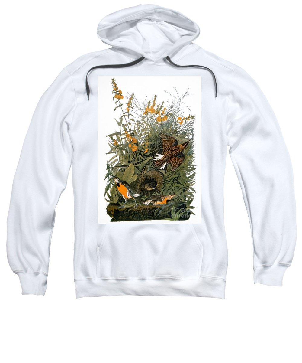 1838 Sweatshirt featuring the photograph Audubon: Meadowlark by Granger