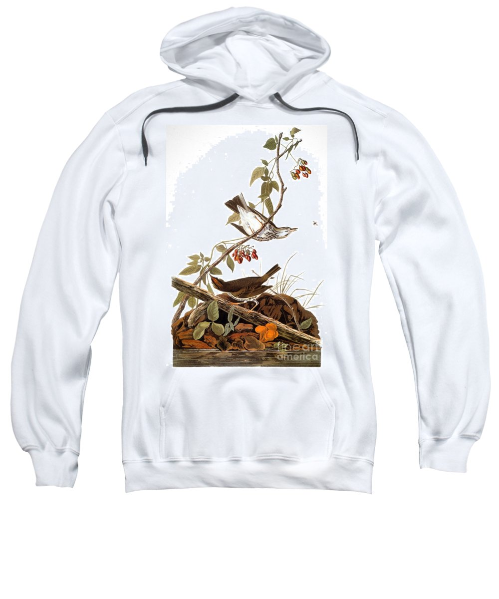 1838 Sweatshirt featuring the photograph Audubon: Ovenbird by Granger