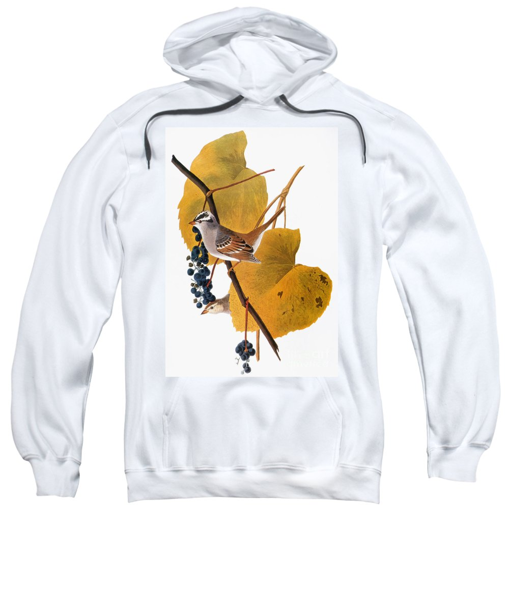 1838 Sweatshirt featuring the photograph Audubon: Sparrow by Granger