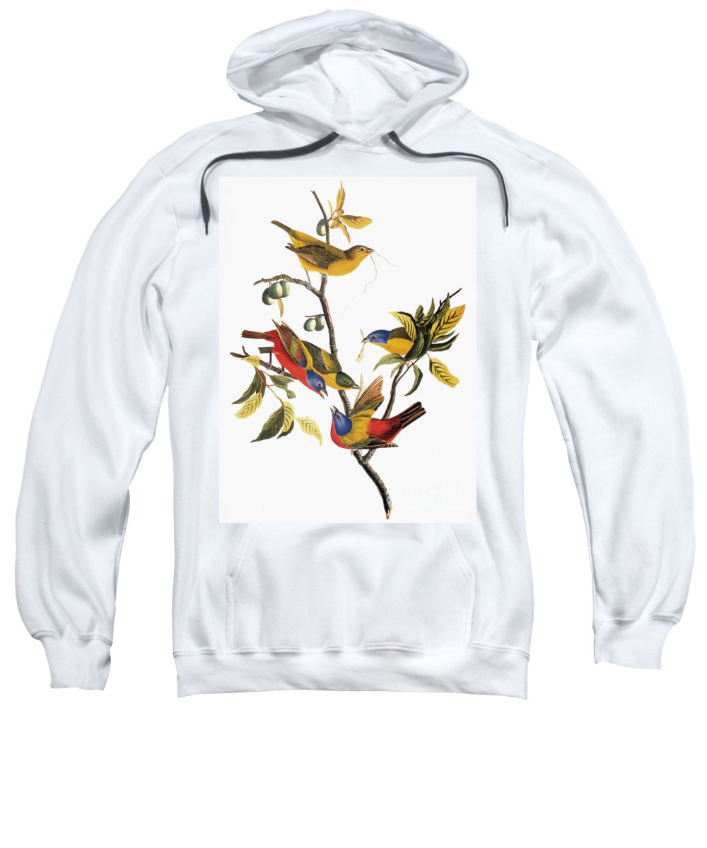 1838 Sweatshirt featuring the photograph Audubon: Sparrows by Granger