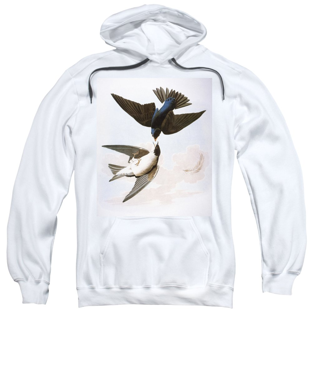 1827 Sweatshirt featuring the photograph Audubon: Swallows, 1827-38 by Granger