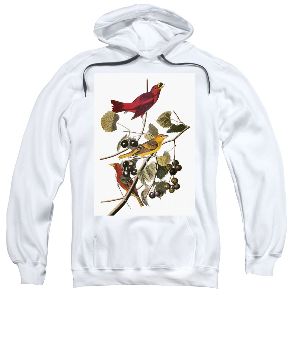 1838 Sweatshirt featuring the photograph Audubon: Tanager by Granger