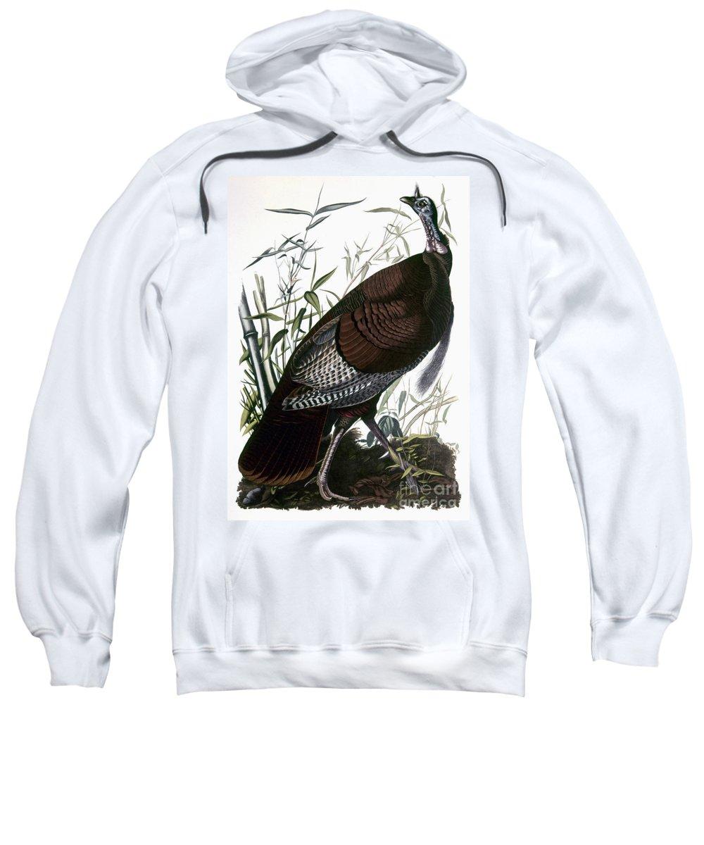 1838 Sweatshirt featuring the photograph Audubon: Turkey by Granger