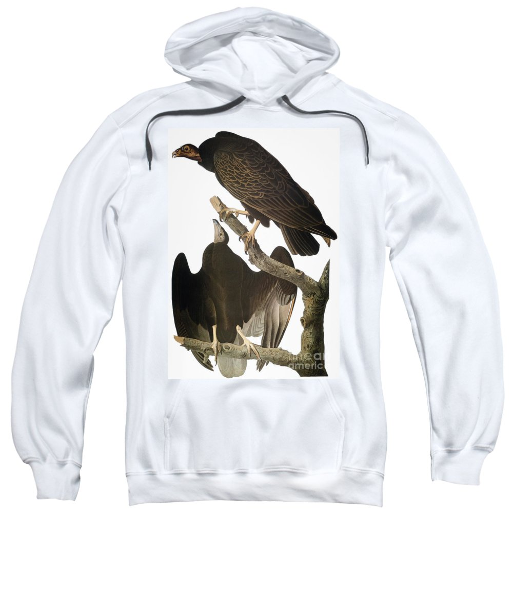 1827 Sweatshirt featuring the photograph Audubon: Turkey Vulture by Granger