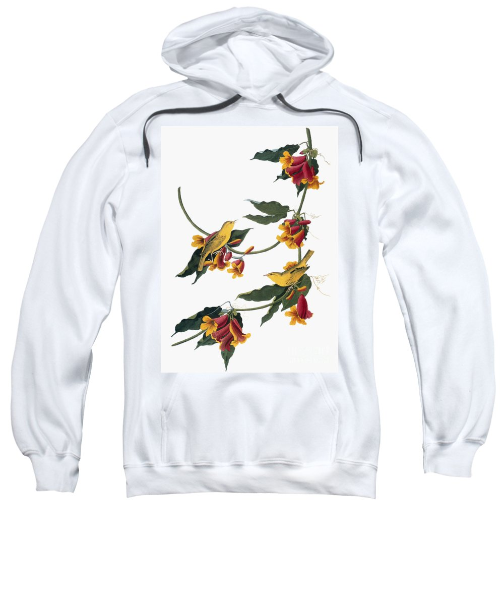1827 Sweatshirt featuring the photograph Audubon: Vireo, 1827-38 by Granger