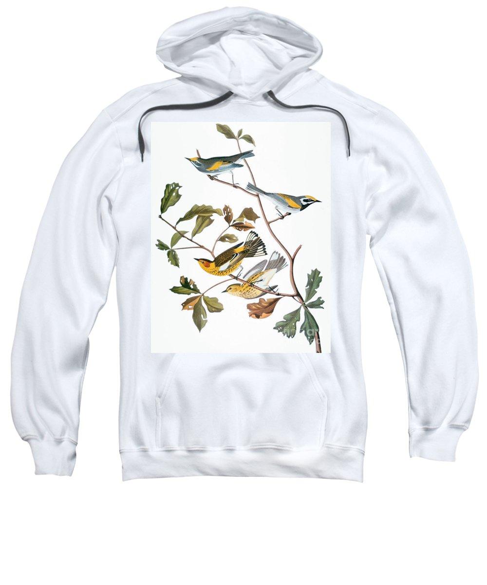 1838 Sweatshirt featuring the photograph Audubon: Warbler, (1827-1838) by Granger