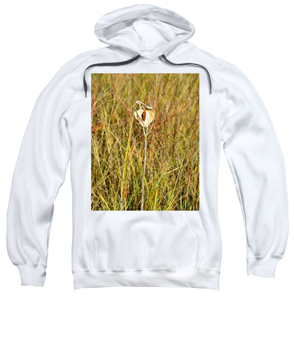 Autumn Sweatshirt featuring the photograph Autumn Caped by Robert Meyers-Lussier