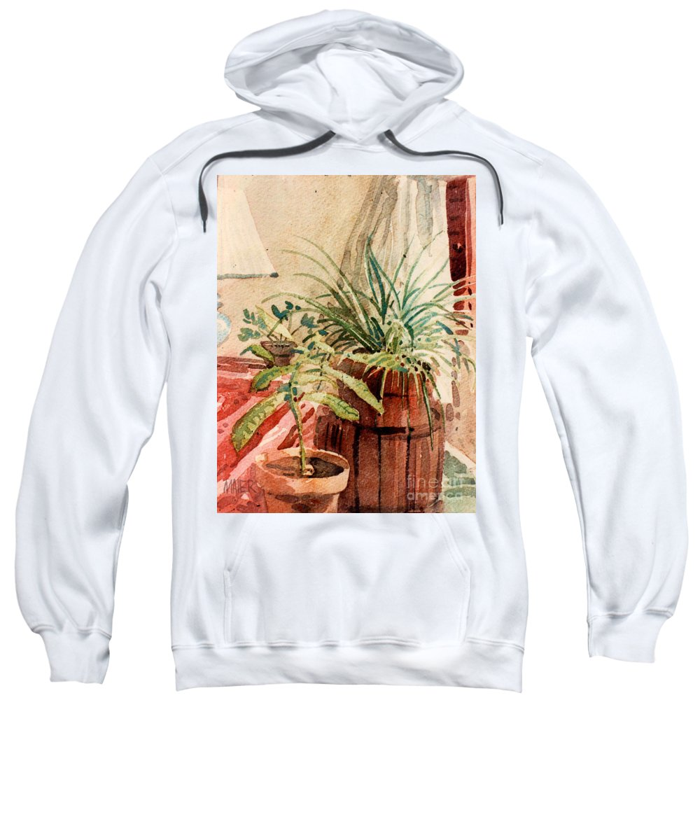 Potted Plants Sweatshirt featuring the painting Avacado And Spider Plant by Donald Maier