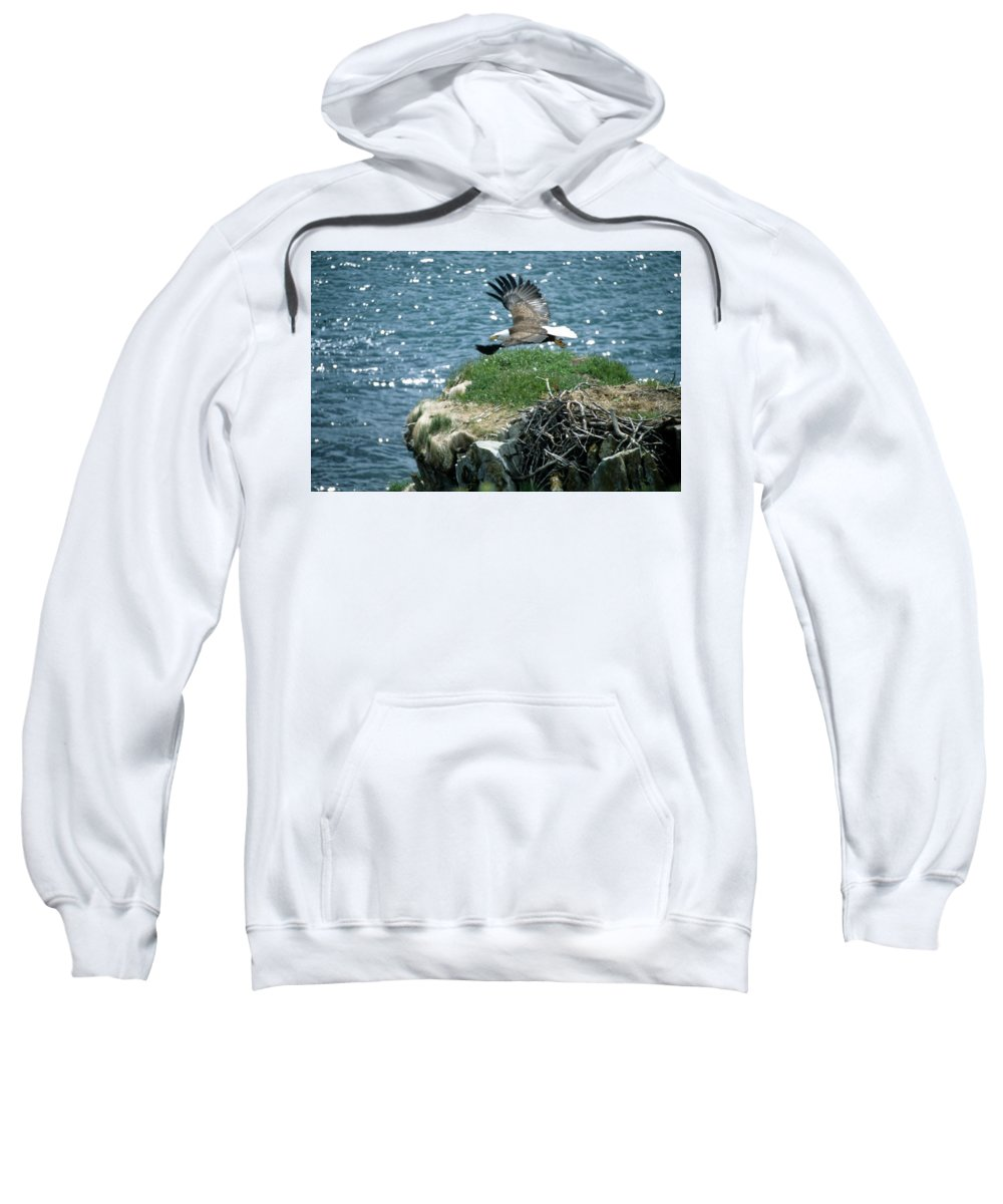 Wildlife Sweatshirt featuring the photograph Bald Eagle Leaves Nest by Larry Allan