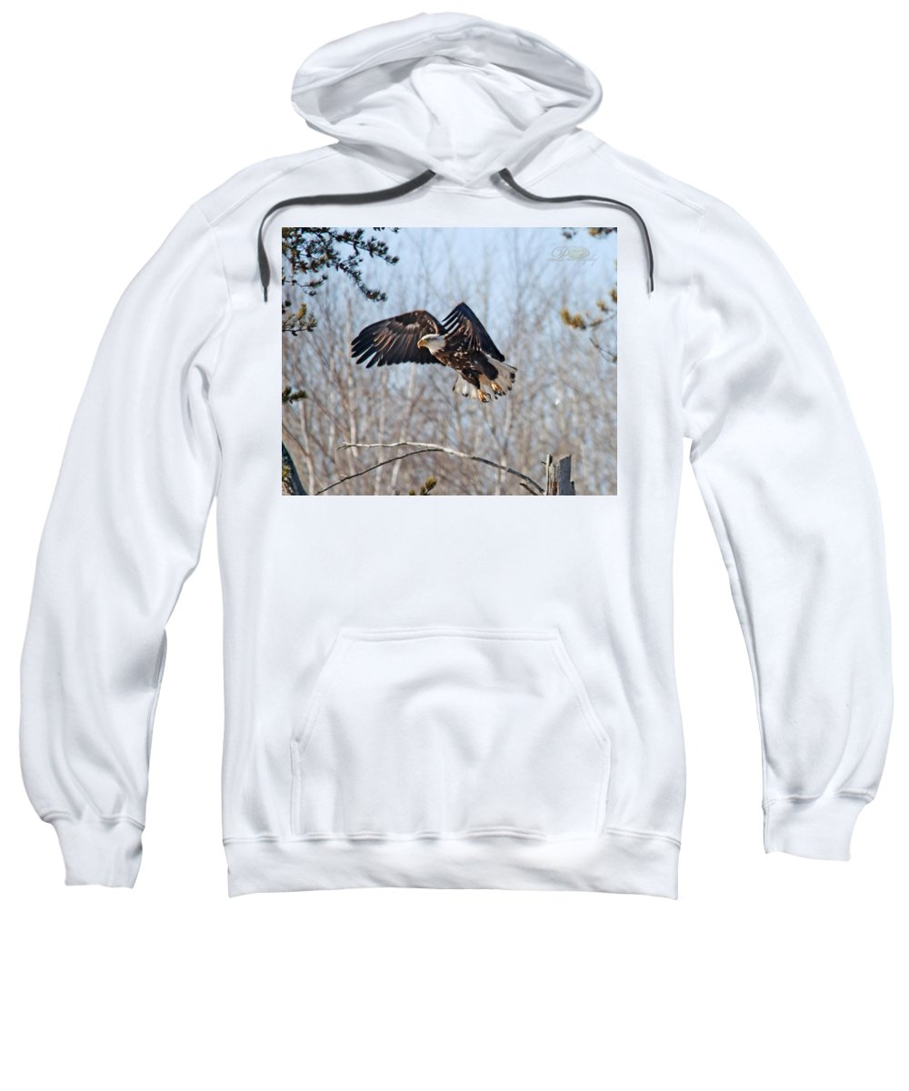 Bald Eagle Sweatshirt featuring the photograph Bald Eagle Near Itasca by Michael Johnk