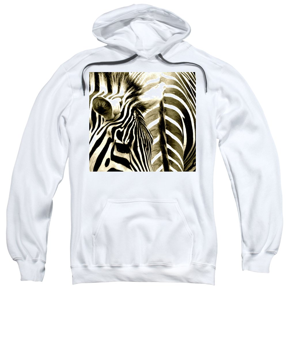 Zebra Sweatshirt featuring the photograph Beautiful Zebras by Caroline Reyes-Loughrey