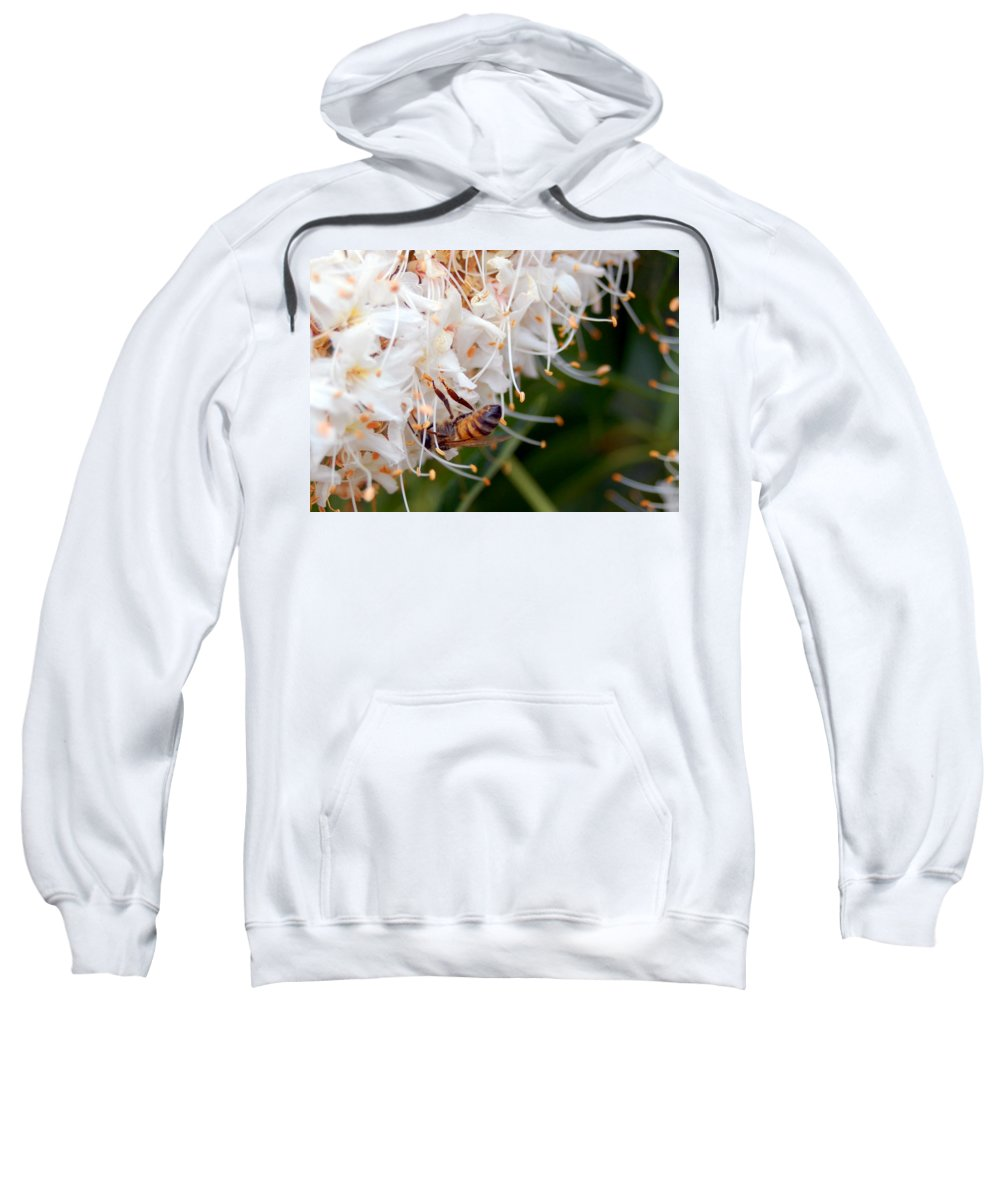 Flower Sweatshirt featuring the photograph Bee On Flowers 1 by Amy Fose