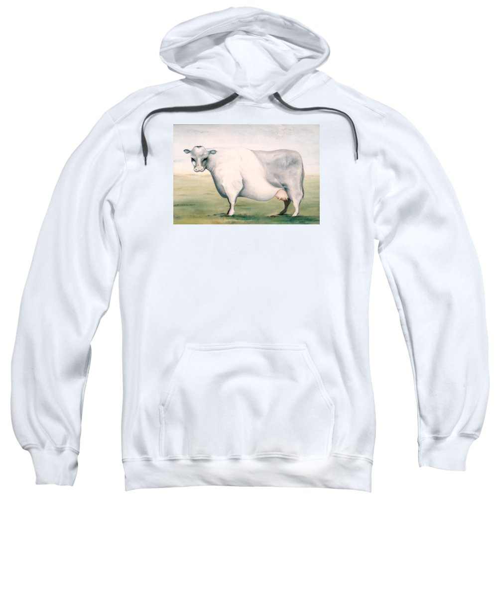 Beef Sweatshirt featuring the painting Beef Holocaust I by Mark Cawood