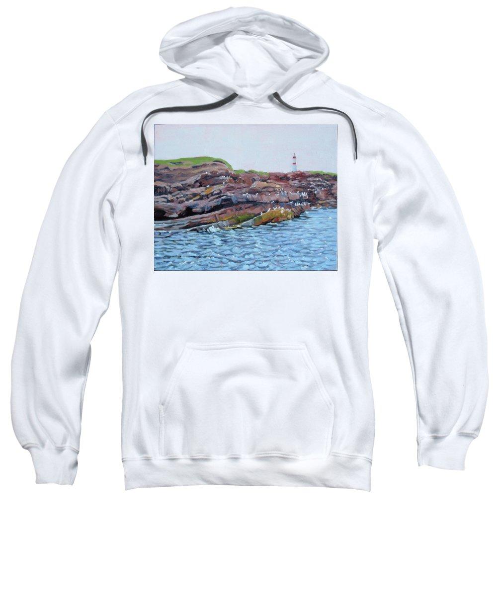 Birds Sweatshirt featuring the painting Bird Island by Carol Morrison
