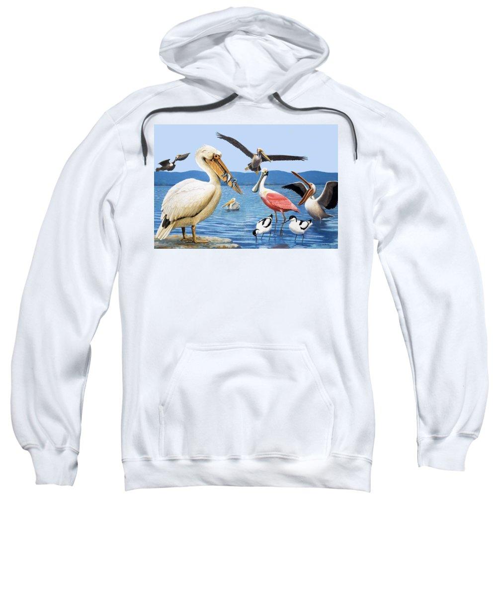 Birds; Beaks; White Pelican; Brown Pelican; Roseate Spoonbill; Avocet; Fish; Water; Lake; America Sweatshirt featuring the painting Birds With Strange Beaks by R B Davis