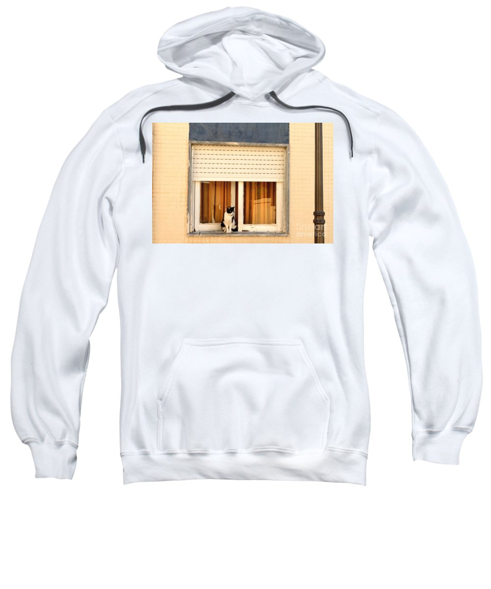 Cat Sweatshirt featuring the photograph Black And White Cat On The Windowsill by Louise Heusinkveld