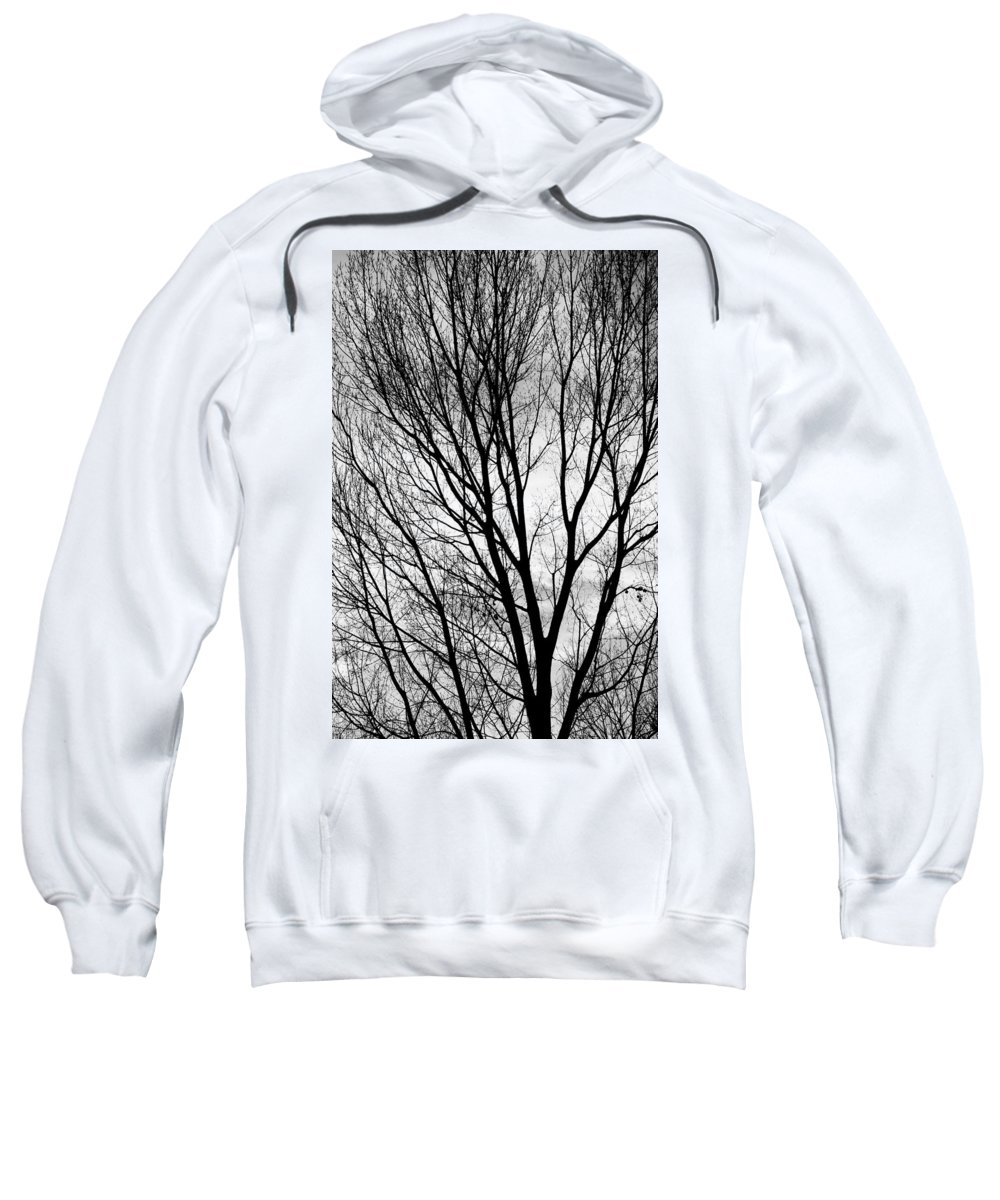 Silhouette Sweatshirt featuring the photograph Black And White Tree Branches Silhouette by James BO Insogna