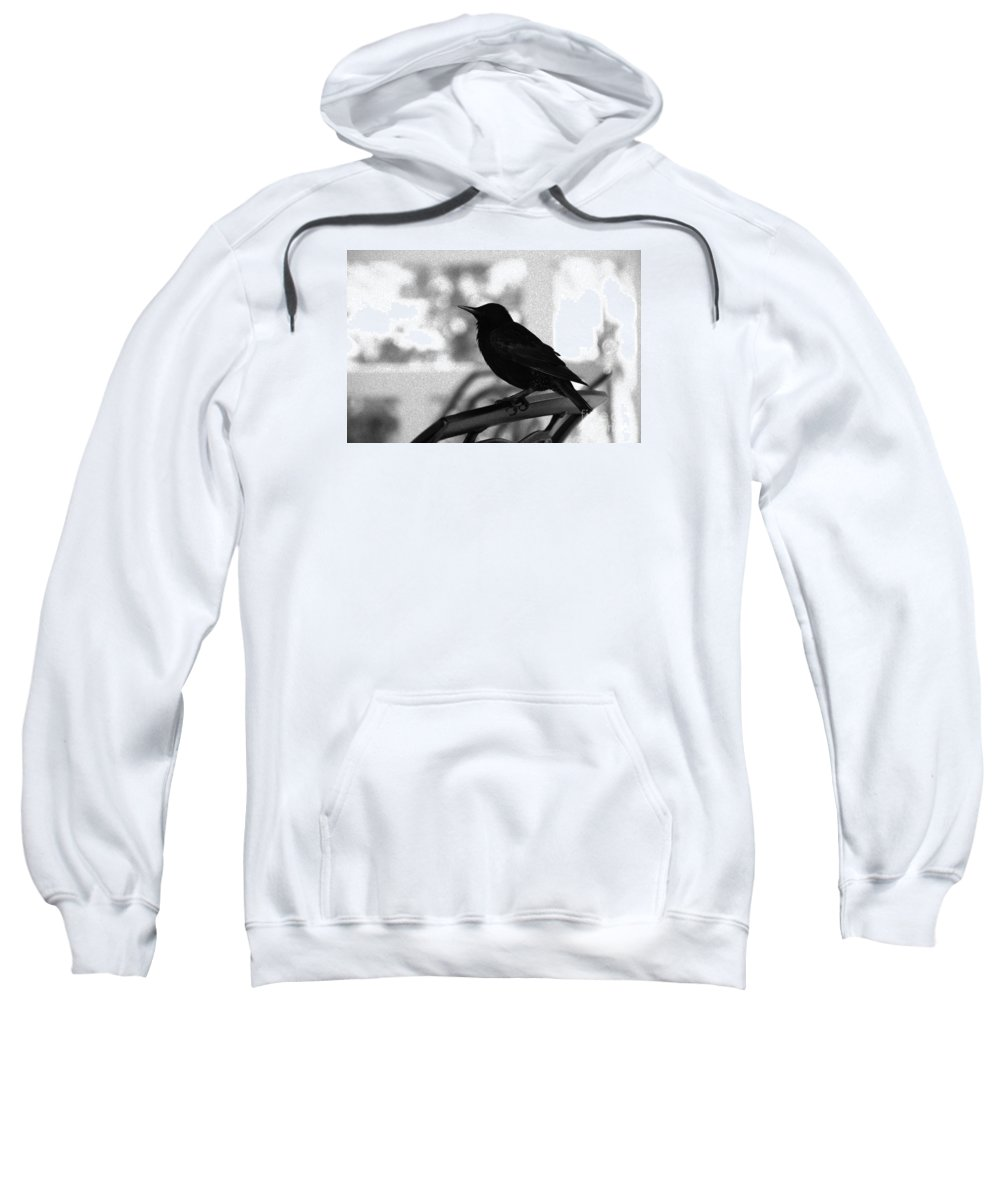 Black Bird Sweatshirt featuring the photograph Black Bird Bw by Linda Shafer