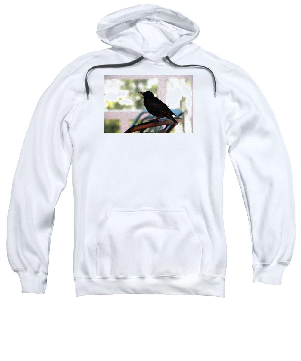 Black Bird Sweatshirt featuring the photograph Black Bird by Linda Shafer