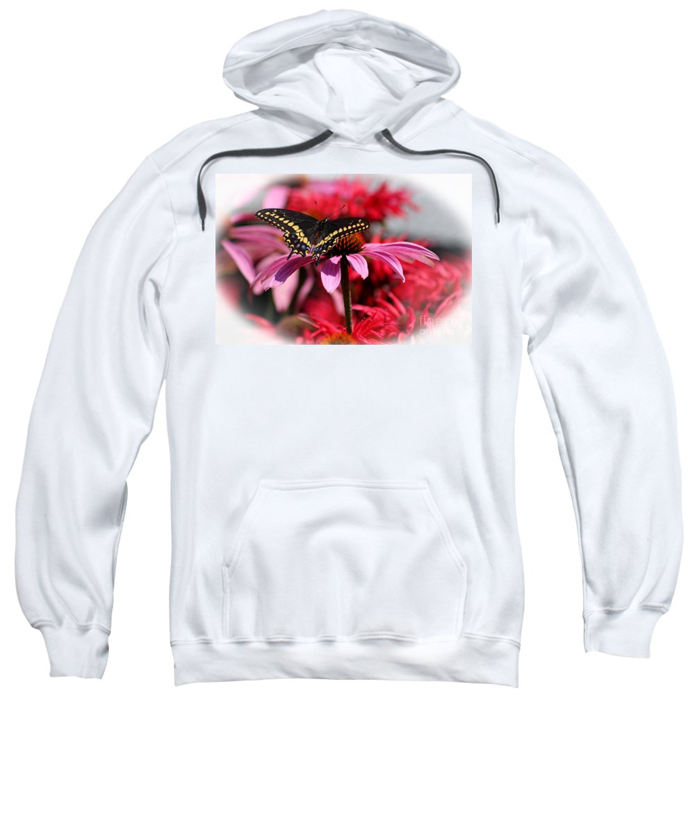 Insect Sweatshirt featuring the photograph Black Swallowtail Butterfly With Coneflower And Monarda by Karen Adams