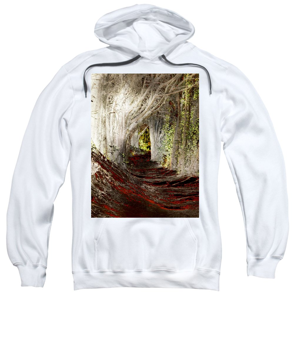 Tree Sweatshirt featuring the photograph Blood Redwoods by Karen W Meyer