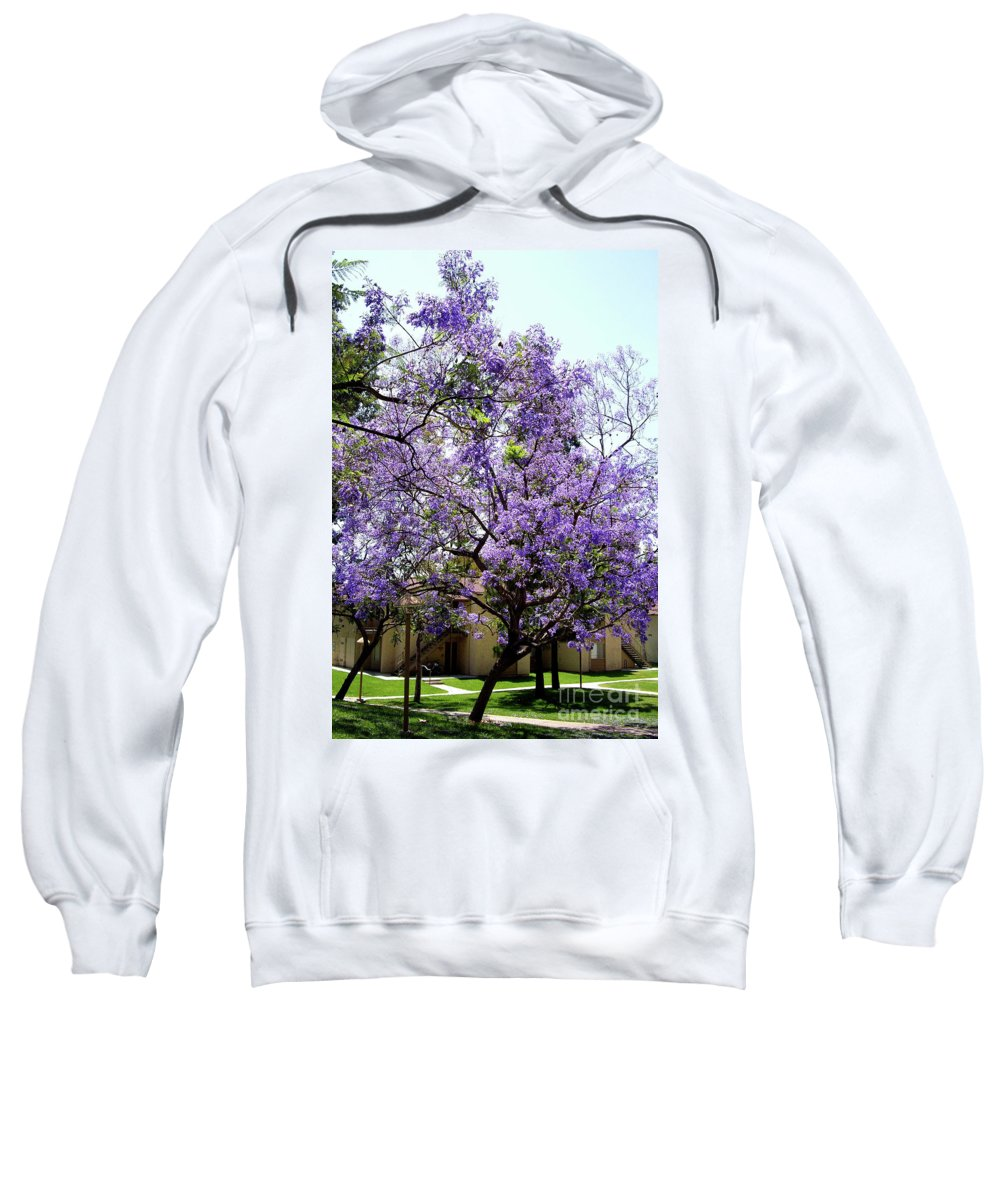 Blooming Sweatshirt featuring the photograph Blooming Tree With Purple Flowers by Mariola Bitner