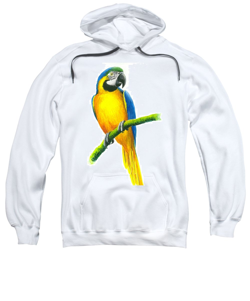 Chris Cox Sweatshirt featuring the painting Blue And Gold Macaw by Christopher Cox
