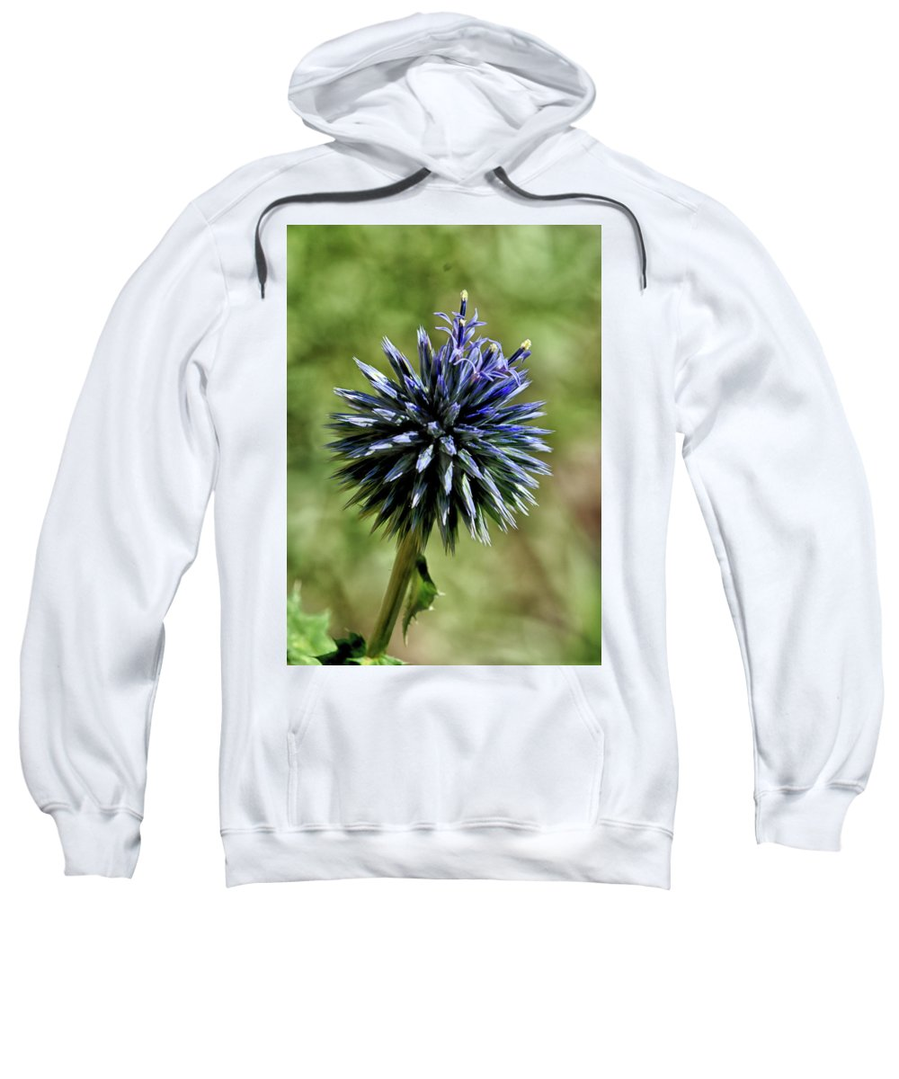 Flower Sweatshirt featuring the photograph Blue On Blue by Barbara Treaster