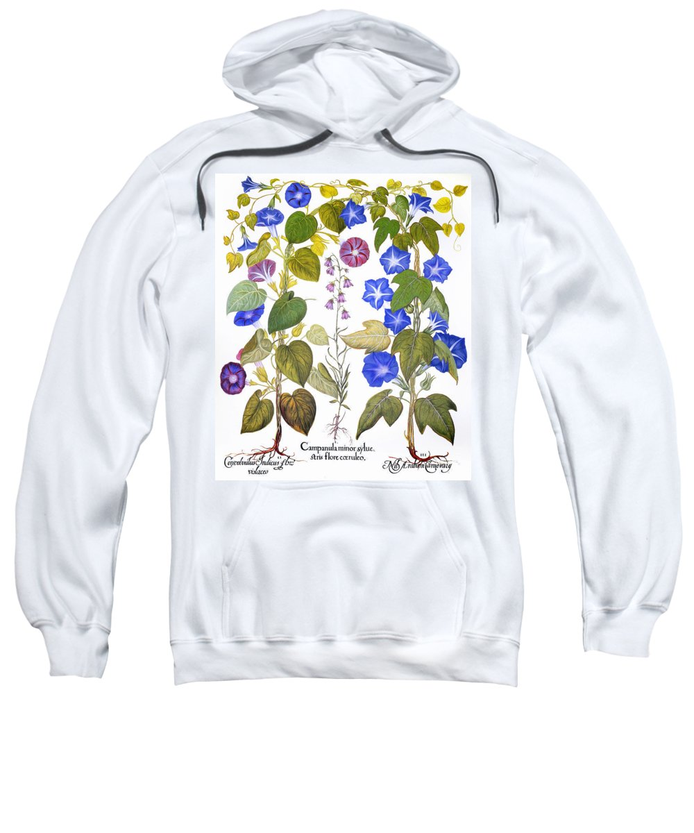 1613 Sweatshirt featuring the photograph Bluebell And Morning Glory by Granger