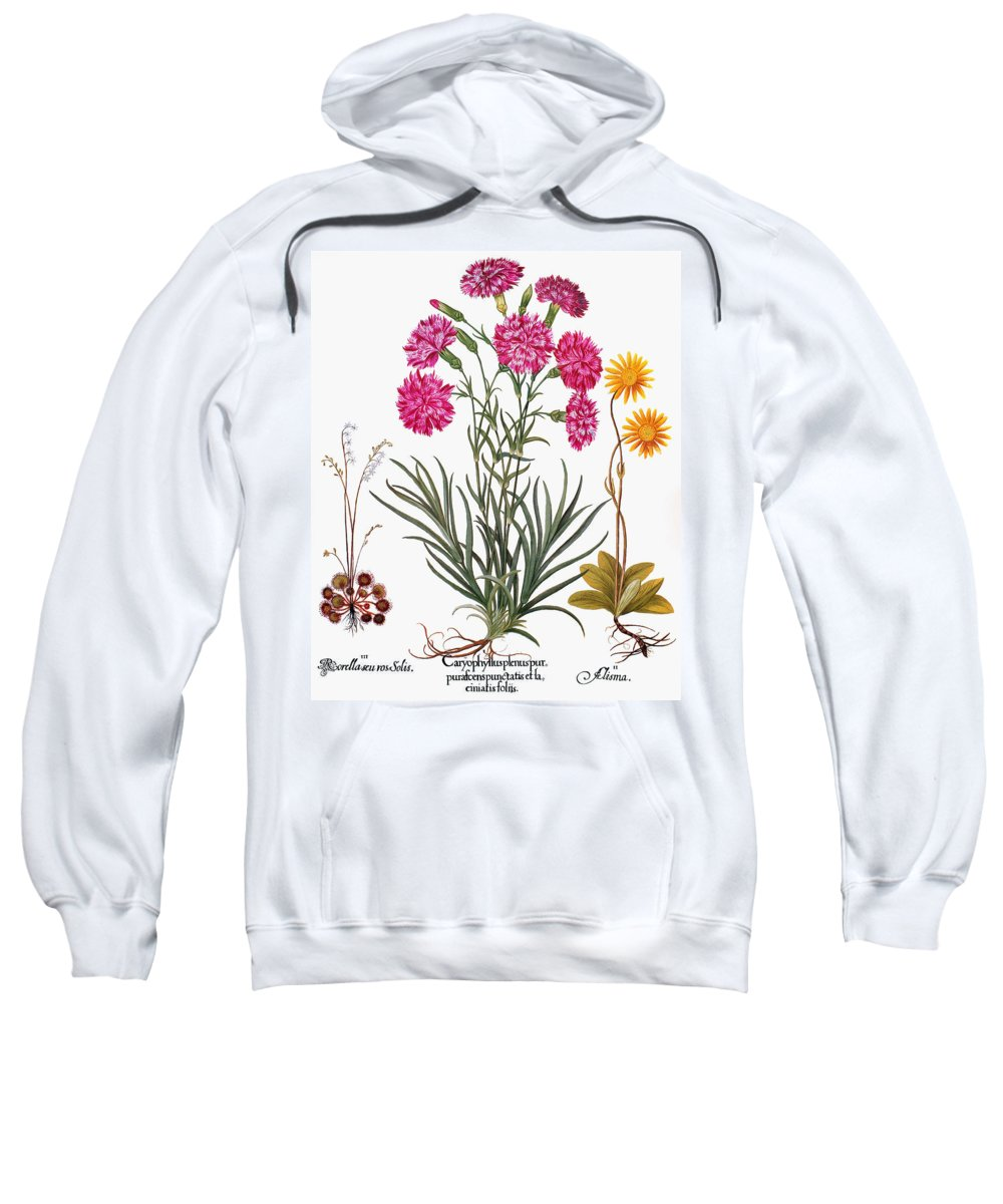 1613 Sweatshirt featuring the photograph Botany: Flowers, 1613 by Granger