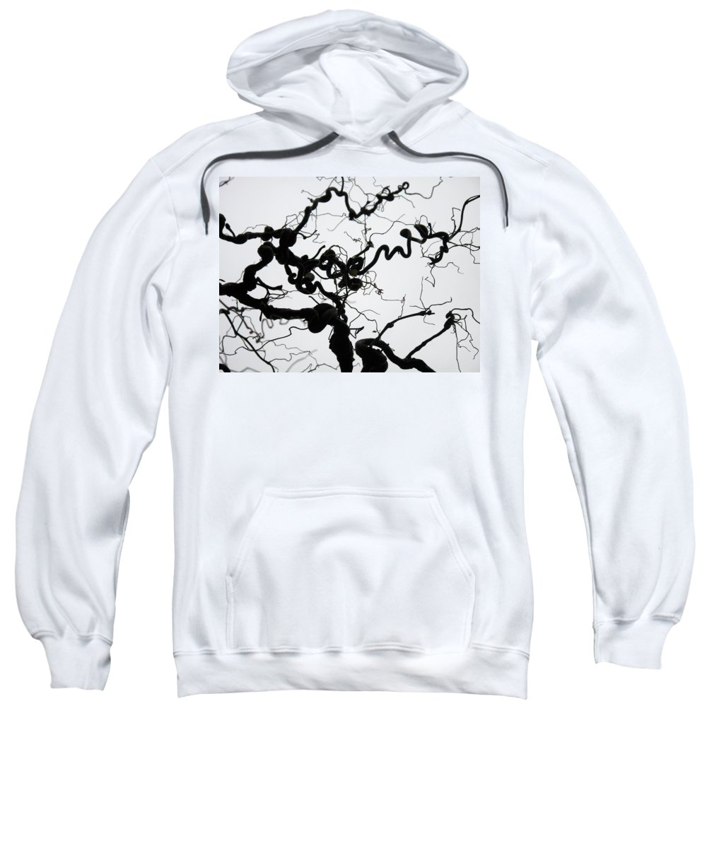 Branches Sweatshirt featuring the photograph Branches by Stefania Levi