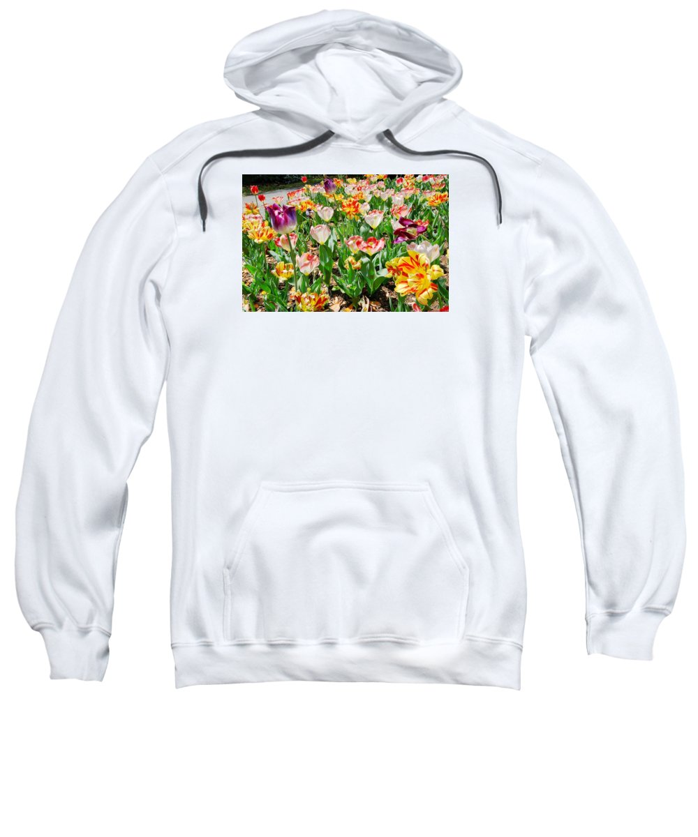 Tulips Sweatshirt featuring the photograph Brookgreen Gardens Tulips by Larry Mccrea
