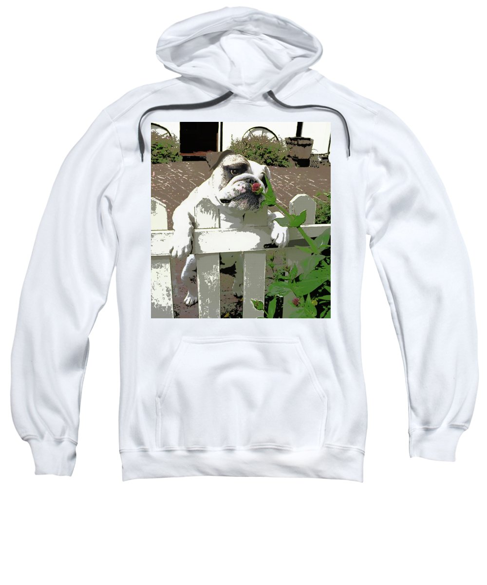 Bulldog Sweatshirt featuring the painting Bulldog Sniffing Flower At Garden Fence by Elaine Plesser