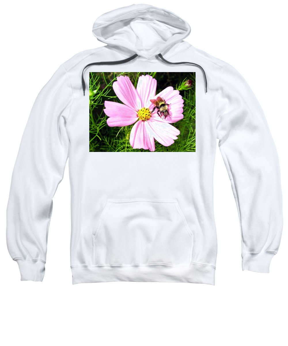 Bee Sweatshirt featuring the photograph Busy Bee by Will Borden