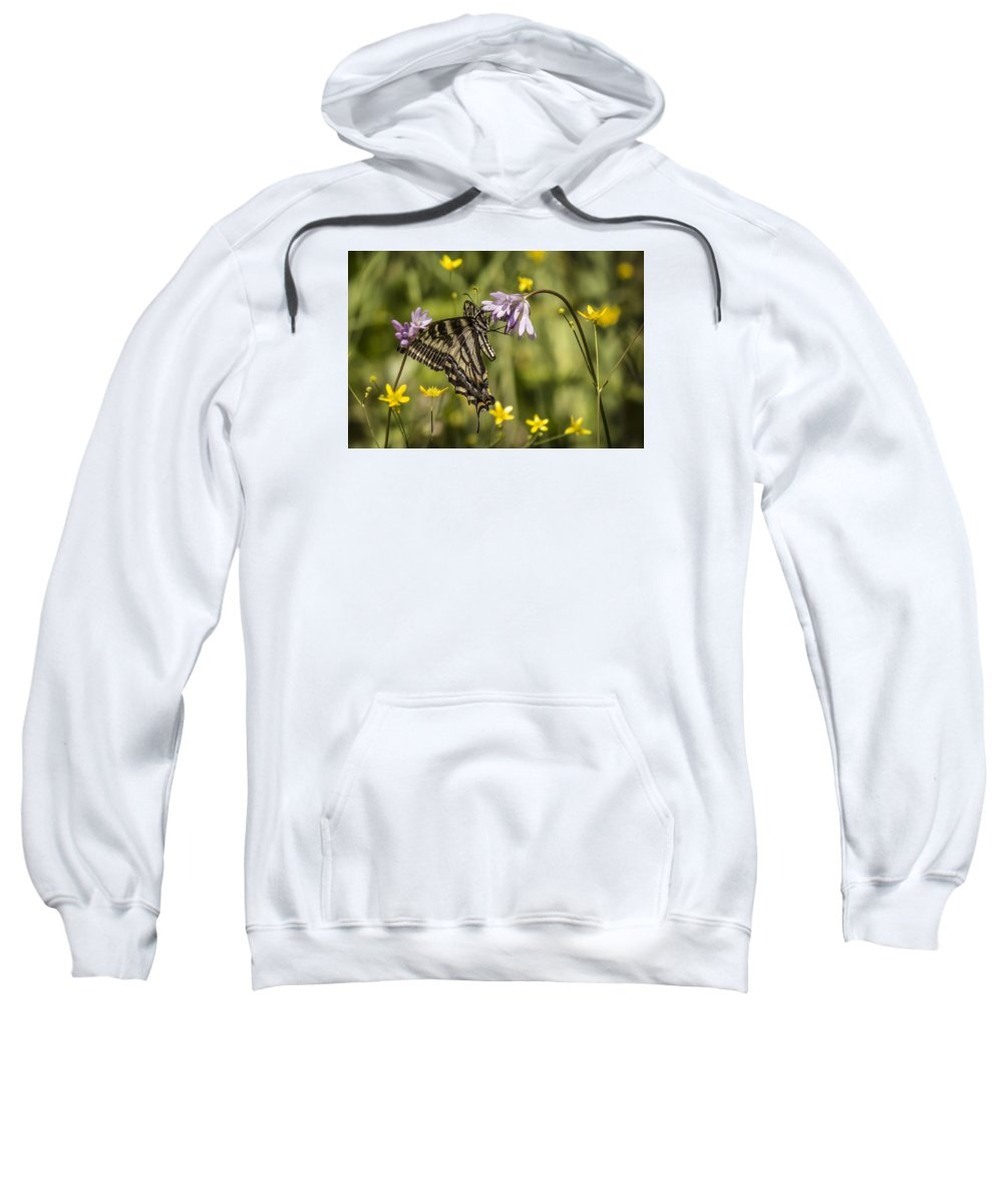 Sweatshirt featuring the photograph Butterfly 10 by Reed Tim