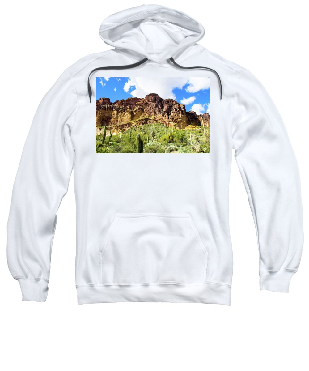 Cactus Sweatshirt featuring the photograph Cactus On The Mountainside by Amy Sorvillo