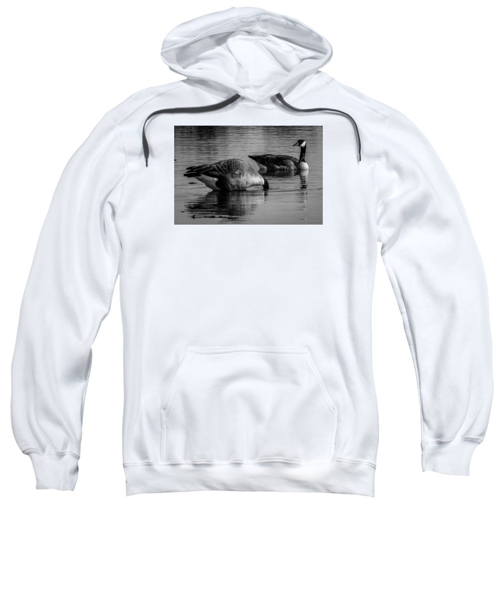 Sweatshirt featuring the photograph Canadian Geese 2 by Reed Tim