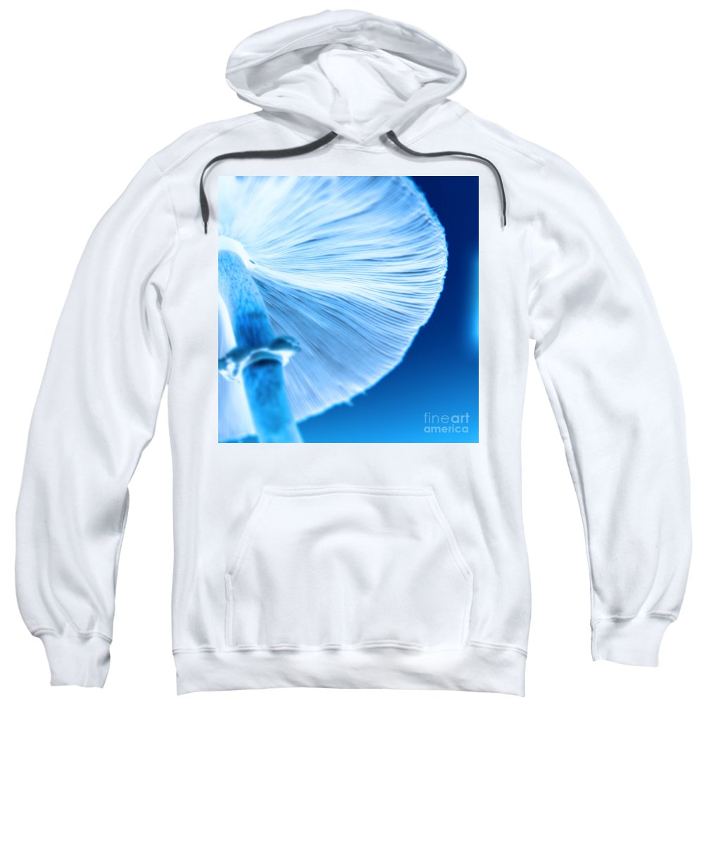 Mushrooms Sweatshirt featuring the photograph Captastic by Amanda Barcon