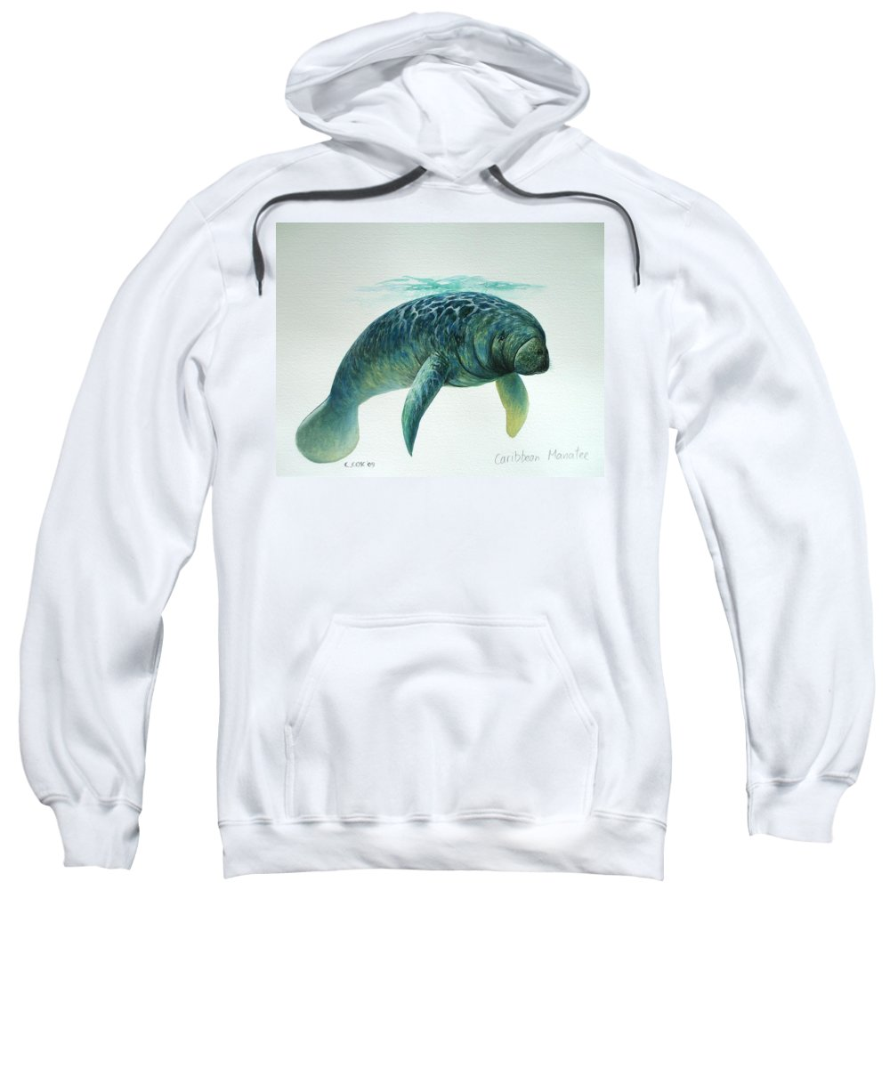 Manatee Sweatshirt featuring the painting Caribbean Manatee by Christopher Cox