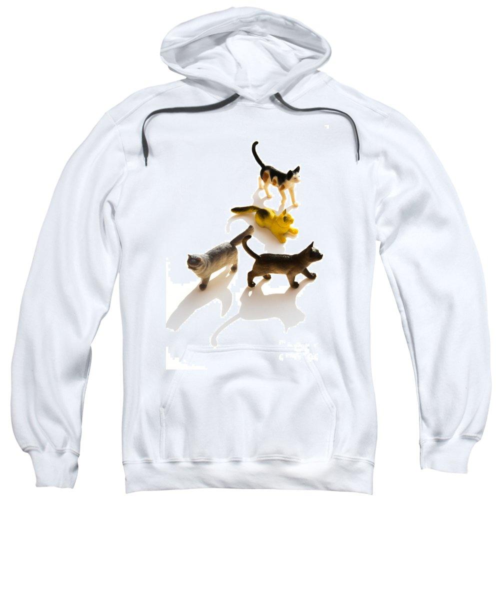 Figurines Sweatshirt featuring the photograph Cats Figurines by Bernard Jaubert