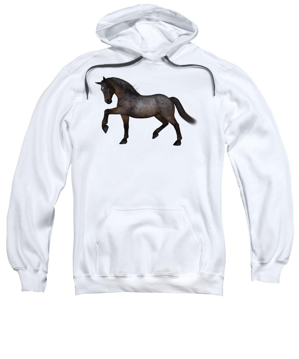 Roan Hooded Sweatshirts T-Shirts