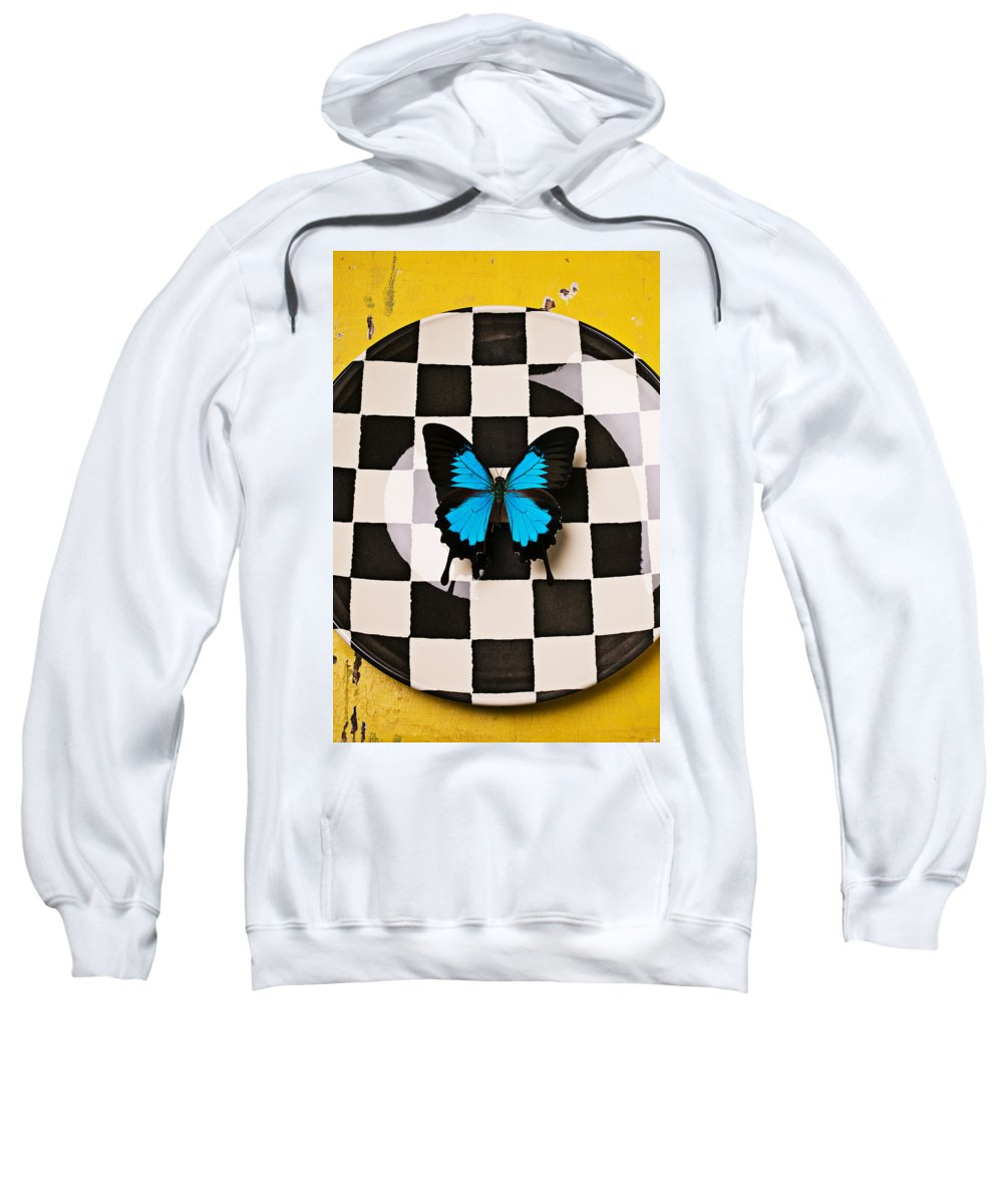 Blue Sweatshirt featuring the photograph Checker Plate And Blue Butterfly by Garry Gay