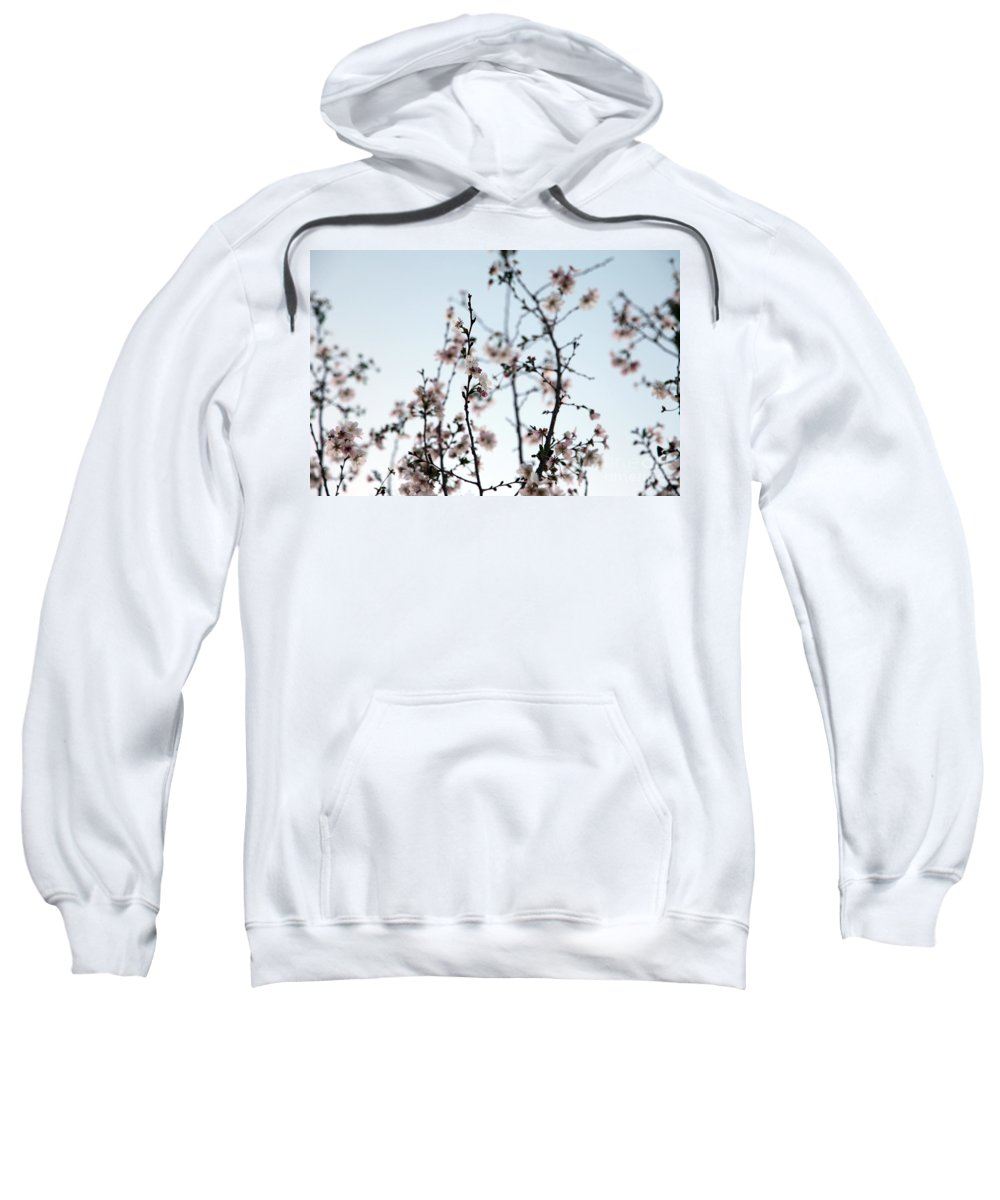 cherry Blossom Sweatshirt featuring the photograph Cherry Blossom by Amanda Barcon