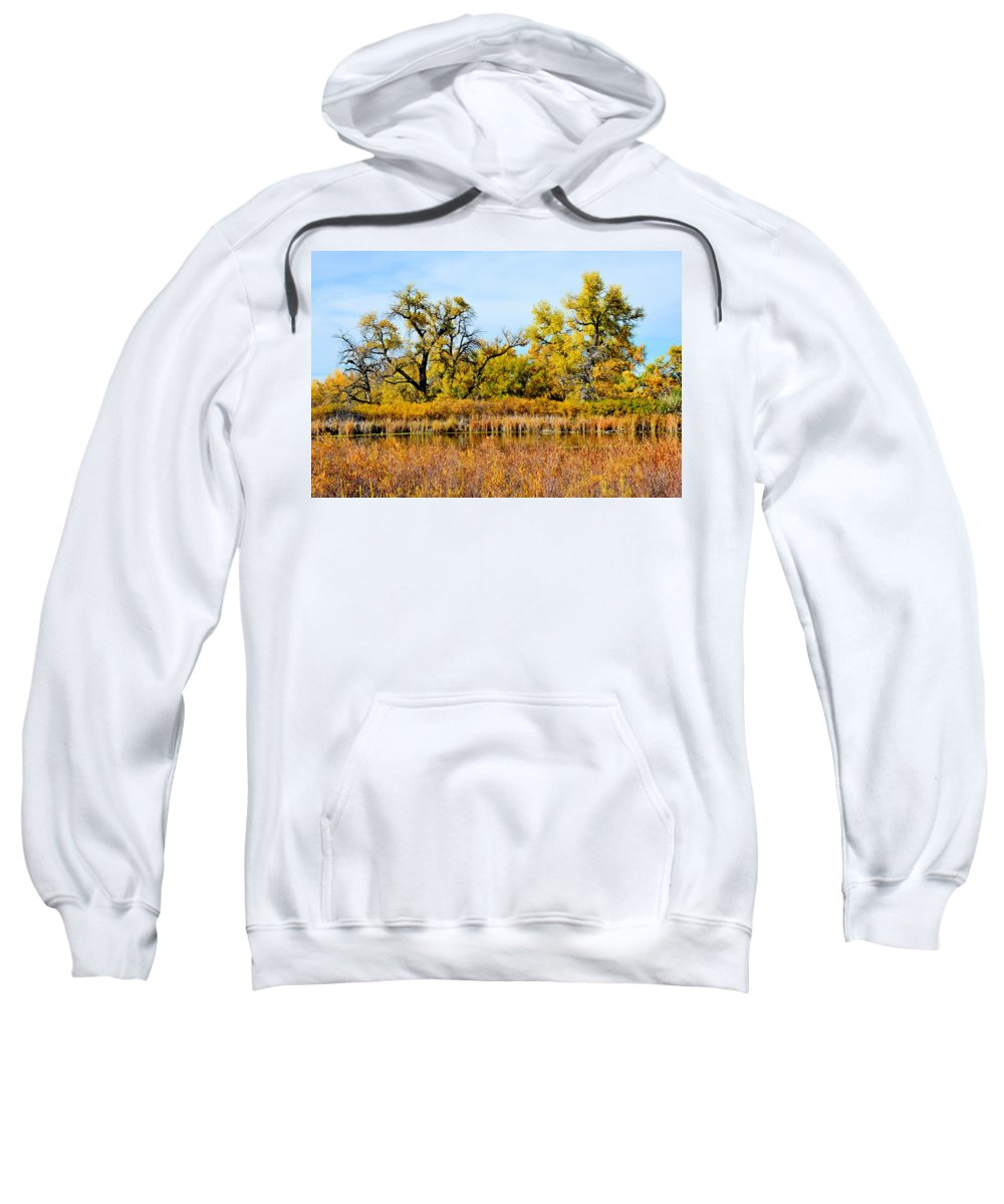 Cherry Creek Sweatshirt featuring the photograph Cherry Creek Pond In Autumn by Robert Meyers-Lussier