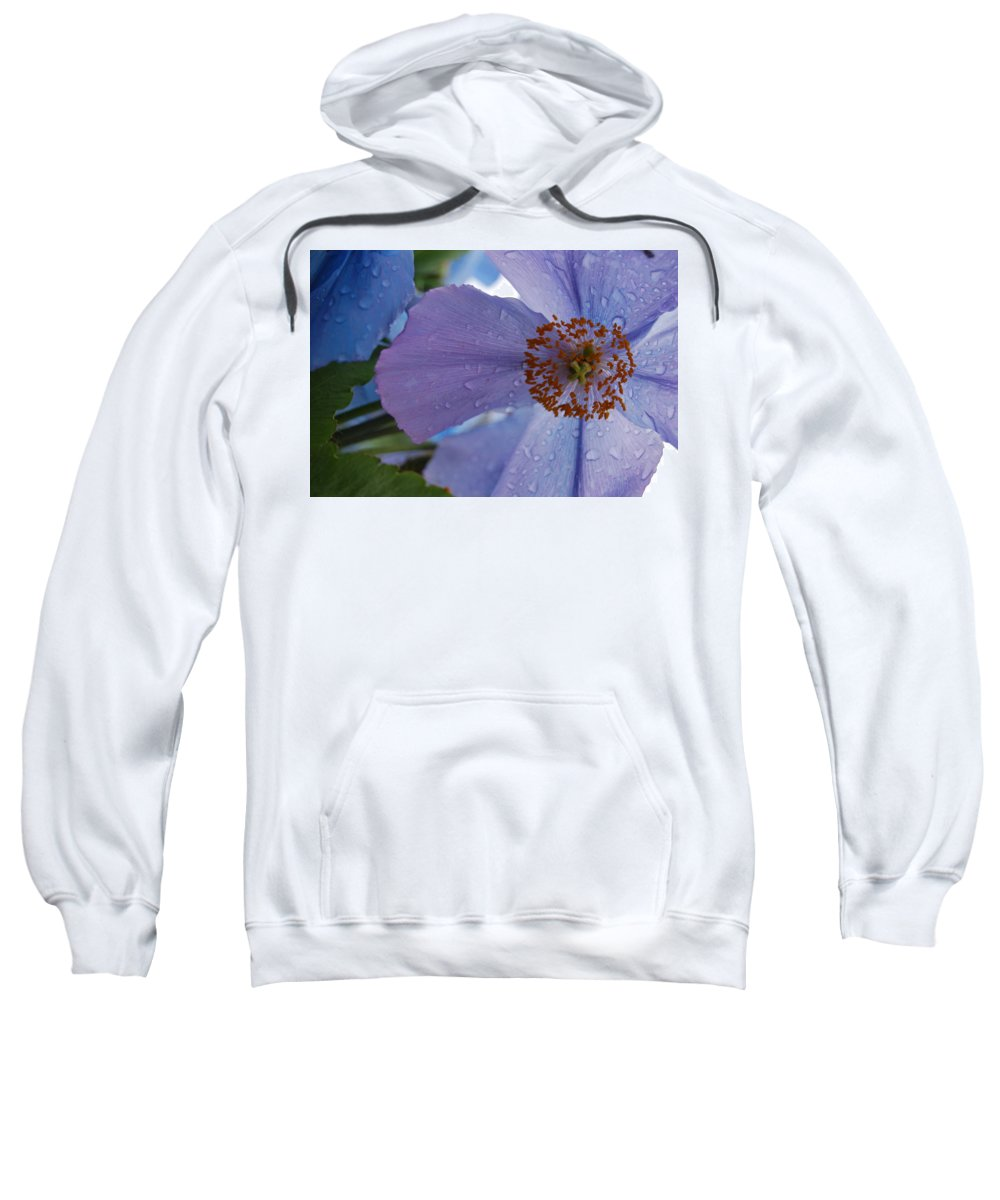 Blue Sweatshirt featuring the photograph Close Up After The Rain by Kristen Bird