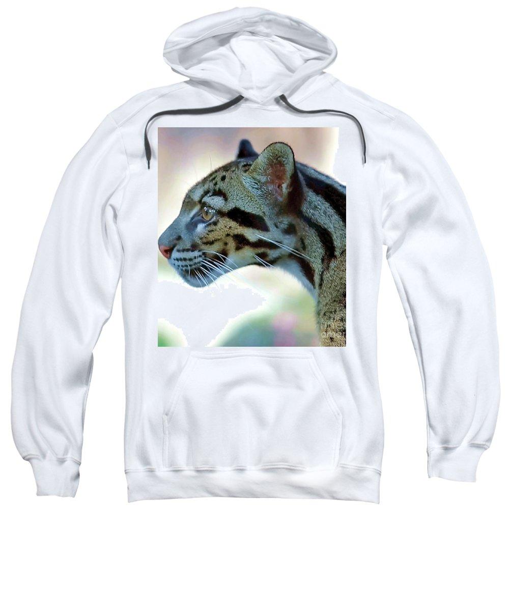 Leopard Sweatshirt featuring the photograph Clouded Leopard by Randy Matthews
