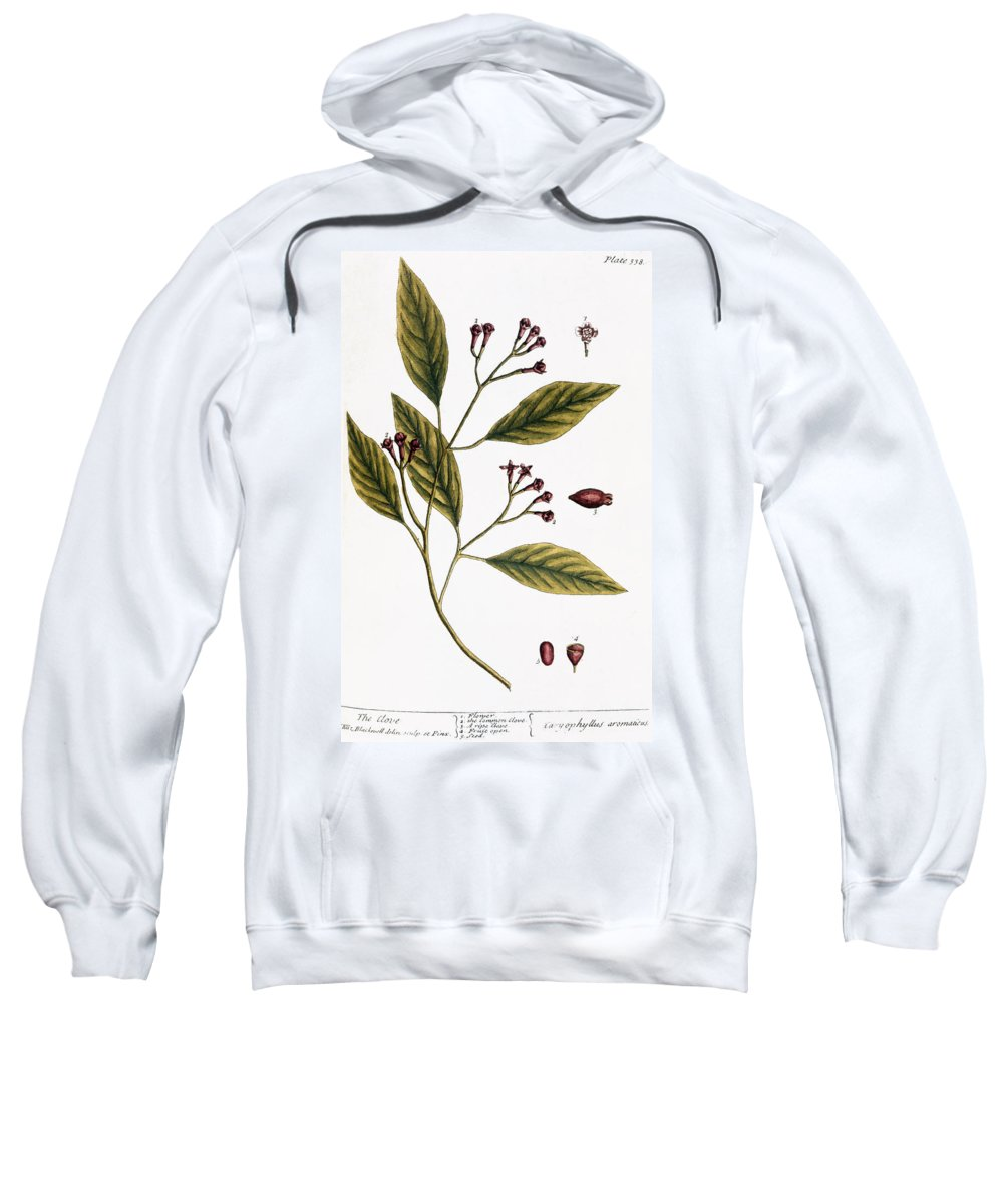 1730s Sweatshirt featuring the photograph Cloves, 1735 by Granger